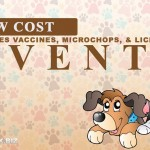 Low Cost Pet Rabies Vaccines, microchips and Licensing